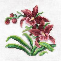 """Klart 8-124 """"Klart"""" набор для вышивания 8-124 """"Дикие орхидеи"""""""