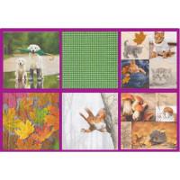 Love2Art SDD-0517-02 Салфетки бумажные «Love2Art» АССОРТИ 3-х слойные SDD 33х33 12 шт. №0517-02 Приближение осени