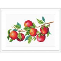 """М.П.Студия  Канва/ткань с рисунком """"М.П.Студия"""" №2 30 см х 40 см СК-106 """"Урожай яблок"""""""
