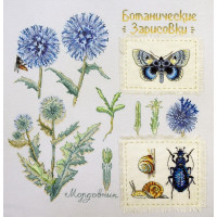 Марья Искусница 03.015.14 Ботаника: Мордовник