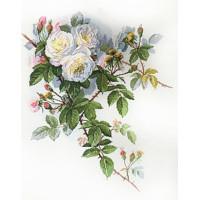 Марья Искусница 06.002.45 Белые розы