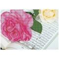 Матренин Посад 4204 Священное Писание. Рисунок на шёлке