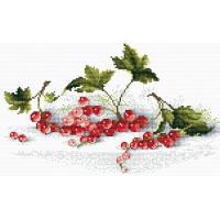 МП Студия М-107 Алая гроздь