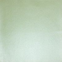 Mr. Painter PSTM/03 Бумага  для скрапбукинга  цвет № 03 св.зеленый