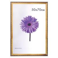 "NO NAME 0023-50-4274 Рамка премиум 50х70 см, пластик, багет 33 мм, ""Dorothy"", золото, 0023-50-4274"