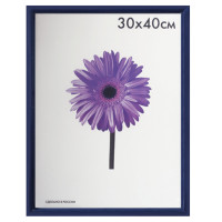 "NO NAME 5052-15-0004 Рамка премиум 30х40 см, пластик, багет 13 мм, ""Maria"", синяя, 5052-15-0004"