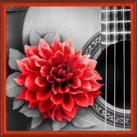 Алмазная живопись 11-165209 Алмазная живопись Картина стразами. Цветок на гитаре (25*25см, стразы, контейнер, холст без подрамника, инструкция) АЖ-1772, (Мосфа)