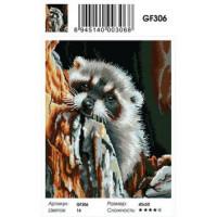 Zhejiang Yiwu Jiangbei 11-179001 Алмазная мозаика Милый енотик (40*50см, стразы квадратные, контейнер, основа-холст с подрамником) GF306