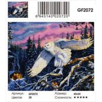 Zhejiang Yiwu Jiangbei 11-179033 Алмазная мозаика Полярная сова (40*50см, стразы квадратные, контейнер, основа-холст с подрамником) GF2072