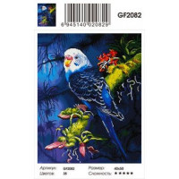 Zhejiang Yiwu Jiangbei 11-179034 Алмазная мозаика Попугай (40*50см, стразы квадратные, контейнер, основа-холст с подрамником) GF2082