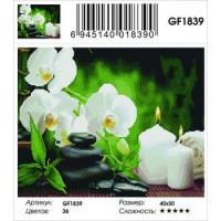 Zhejiang Yiwu Jiangbei 11-183599 Алмазная мозаика Белые орхидеи (40*50см, стразы квадратные, контейнер, основа-холст с подрамником) GF1839