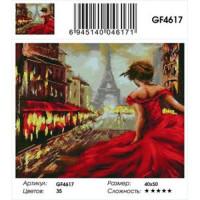 Zhejiang Yiwu Jiangbei 11-183617 Алмазная мозаика Незнакомка в Париже (40*50см, стразы квадратные, контейнер, основа-холст с подрамником) GF4617