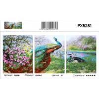 YIWU XINSHIXIAN ARTS AND CRAFTS CO.,LTD 11-183691 Картина по номерам модульная Павлины (3 картины, холст на подрамнике, кисти, акриловые краски) PX5281