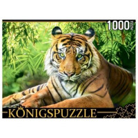 Рыжий кот 11-185135 ПазлыKONIGSPUZZLE 1000 дет. Благородный тигр ГИK1000-0649, (Рыжий кот)