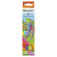 """Brauberg 180522 Карандаши цветные BRAUBERG """"Wonderful butterfly"""", 6 цветов, заточенные, картонная упаковка с блестками, 180522"""