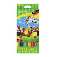 """Brauberg 180534 Карандаши цветные BRAUBERG """"Football match"""", 12 цветов, заточенные, картонная упаковка, 180534"""