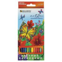 """Brauberg 180535 Карандаши цветные BRAUBERG """"Wonderful butterfly"""", 12 цветов, заточенные, картонная упаковка с блестками, 180535"""
