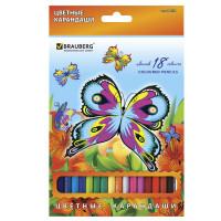 """Brauberg 180550 Карандаши цветные BRAUBERG """"Wonderful butterfly"""", 18 цветов, заточенные, картонная упаковка с блестками, 180550"""