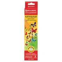 """Brauberg 181284 Карандаши цветные BRAUBERG """"Бабочки"""", набор 6 цветов, трехгранные, корпус с полосками, 181284"""