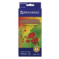 """Brauberg 181288 Карандаши цветные BRAUBERG """"Цветы"""", набор 12 цветов, трехгранные, лакированное дерево, 181288"""