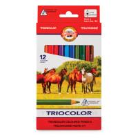"""KOH-I-NOOR 3142012005KS Карандаши цветные утолщенные KOH-I-NOOR """"Triocolor"""", 12 цветов, трехгранные, 5,6 мм, заточенные, 3142012005KS"""