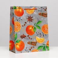 Прочие N0007556 5306502 Пакет подарочный «Мандарин и корица», 26 х 32 х 12 см
