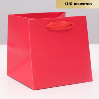 Прочие С0001643 4568872 Пакет ламинированный, красный, люкс, 15 х 15 х 15 см