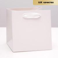 Прочие С0001644 4568873 Пакет ламинированный, белый, люкс, 15 х 15 х 15 см