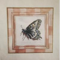 Orchidea 8033 Набор для вышивания  Бабочка, украшенный фон 23*23 см