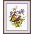 Овен 944 Птички-невелички. Колибри