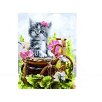 Paintboy GX37072 Картина по номерам 40х50 GX37072 Котенок на лужайке