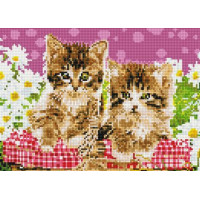 Paintboy QS200304 Алмазная мозаика 30х40 QS200304 Два котенка