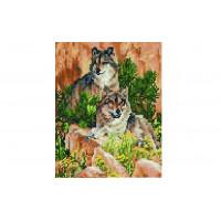 Paintboy QS200452 Алмазная мозаика 30х40 QS200452 Волки в горах