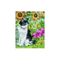 Paintboy QS200535 Алмазная мозаика 30х40 QS200535 Кот в цветах