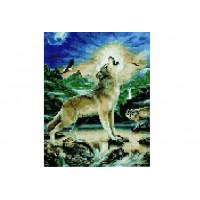Paintboy QS201006 Алмазная мозаика 30х40 QS201006 Одинокий волк
