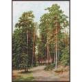 Палитра 08.015 Солнце в лесу