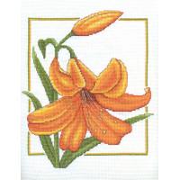 Panna Ц-0091 Оранжевый дуэт