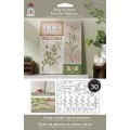 """Plaid 05203 Набор для декора """"Растения"""""""