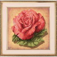 Риолис 0070 РТ Роза