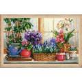 Риолис 1669 Подоконник с цветами