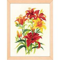 Риолис 1782 Солнечные лилии