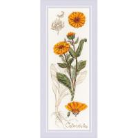 Риолис 503704 1798 Набор для вышивания Риолис 'Календула'10*30 см