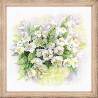Риолис 547139 1467 Набор для вышивания Riolis 'Акварельный жасмин', 30*30 см