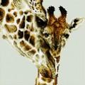 Рукоделие AZM3030/J-008 Жирафы