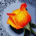 Рукоделие AZM3030/Z-004 Оранжевая роза