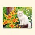 Русская сказка АРН-024 Белый котик
