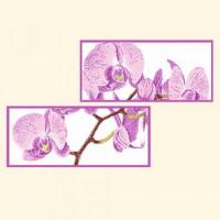 Русская сказка РСН-201 Дыхание орхидеи