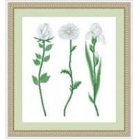 Сделано с любовью 006 Набор для вышивания «Сделано с любовью» ЦВ-006 Белые цветы