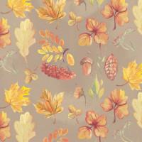 "Stilerra WPO-02/02 Упаковочная бумага односторонняя, цвет 02 ""Осень"""