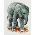 Pako 210.843 Слонёнок